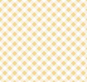 Gingham Fabric 04